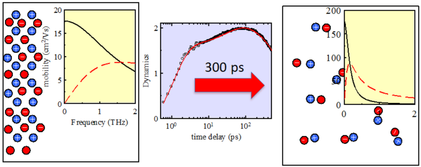 terahertz spectroscopy approach Protein dynamics has been studied using terahertz spectroscopy using proteins like bacteriorhodopsin, illustrating a potential application where this approach can provide complementary global dynamics information to the current nuclear magnetic resonance and fluorescence-based techniques.
