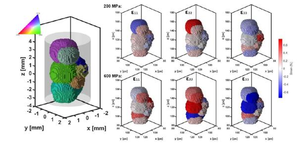 Reconstruction of microstructure and internal stress in CoNiGa oligocrystal loaded in compression using the 3D Laue neutron tomography
