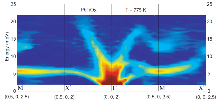 Phonon branches in the paraelectric phase of PbTiO3