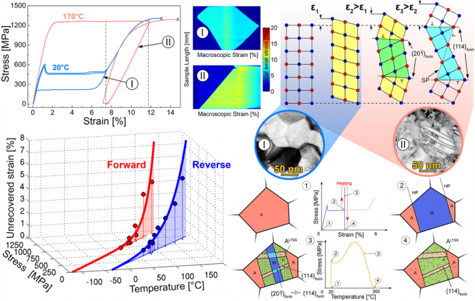 TRIP like deformation of NiTi shape memory alloys